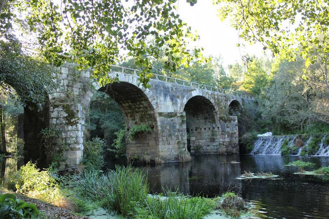Ponte Freixo