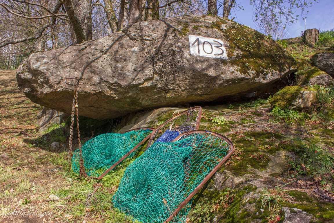 Redes para pescar lampreas en Arbo