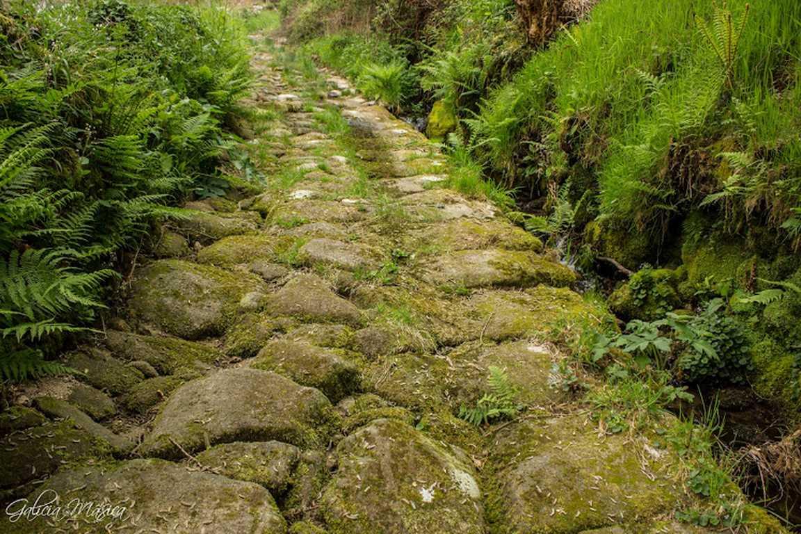 Camino centenario