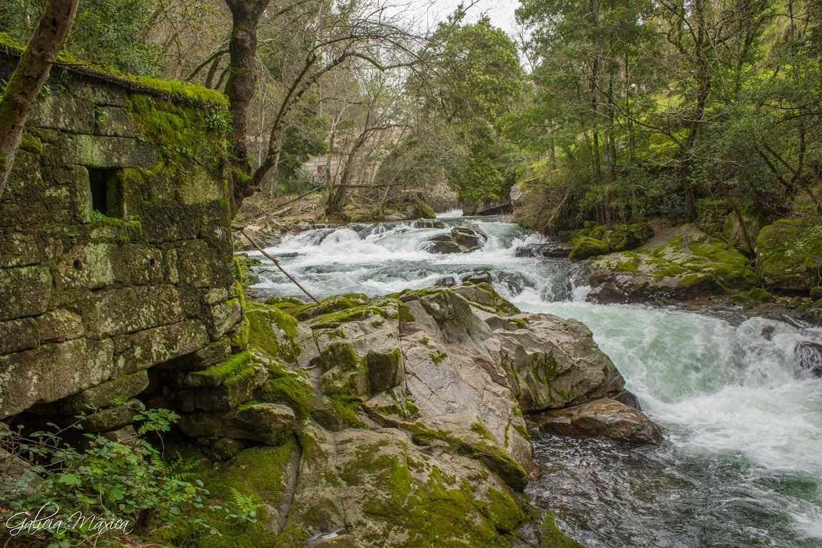 Molno en el río Deva