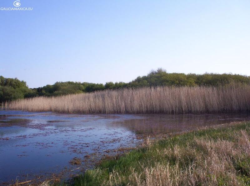 Lagoa da Bodeira