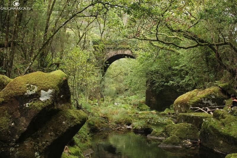 Puente de la carretera próximo