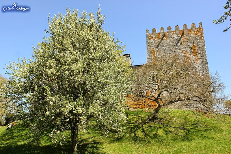Castillo de San Paio de Narla