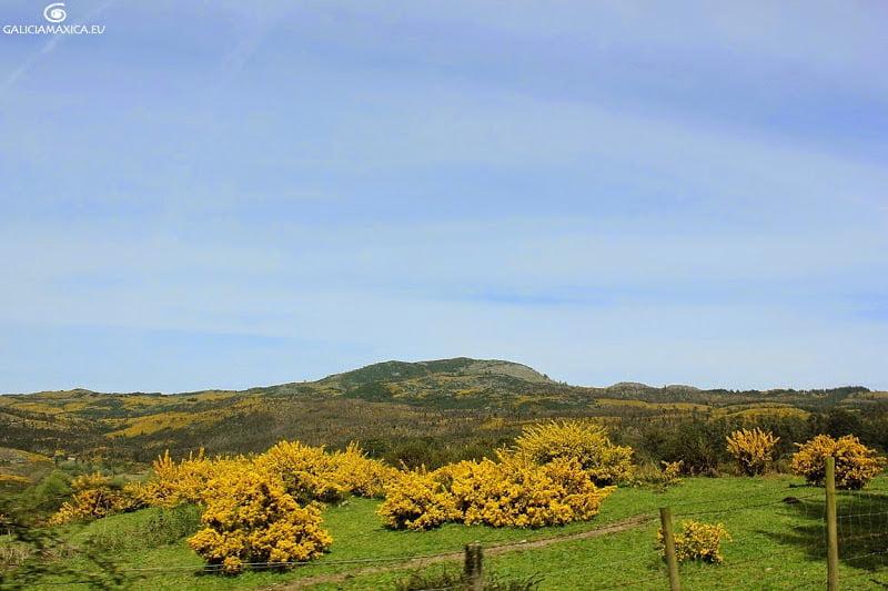 Montes de Gargamala