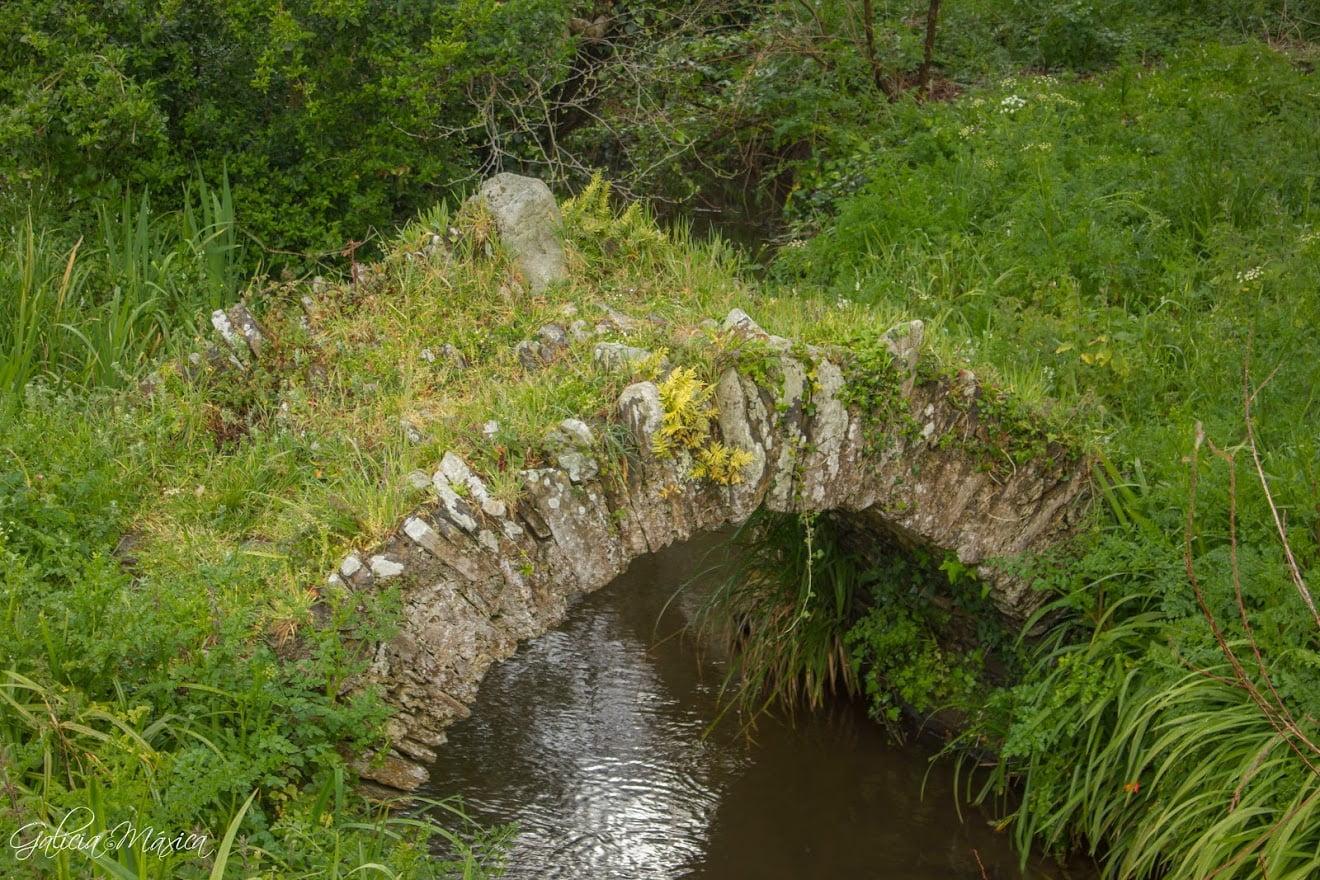 Ponte da Area