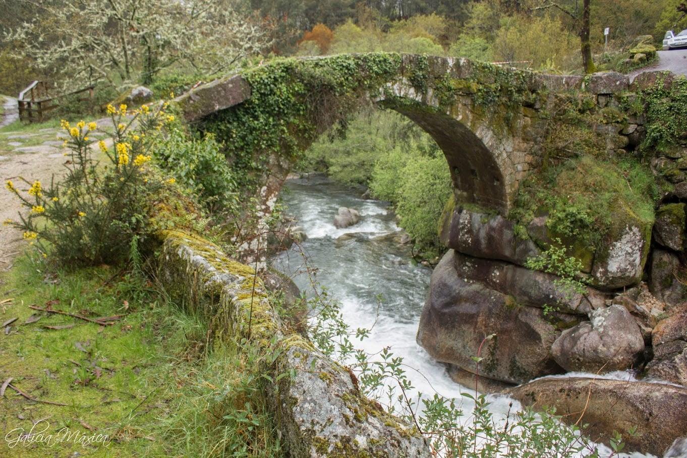 Ponte Almofrei