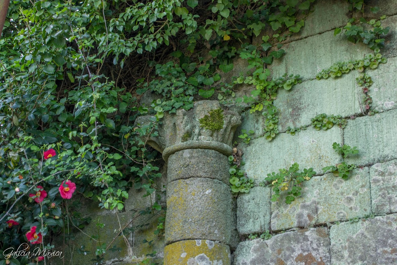 Columna adosada románica