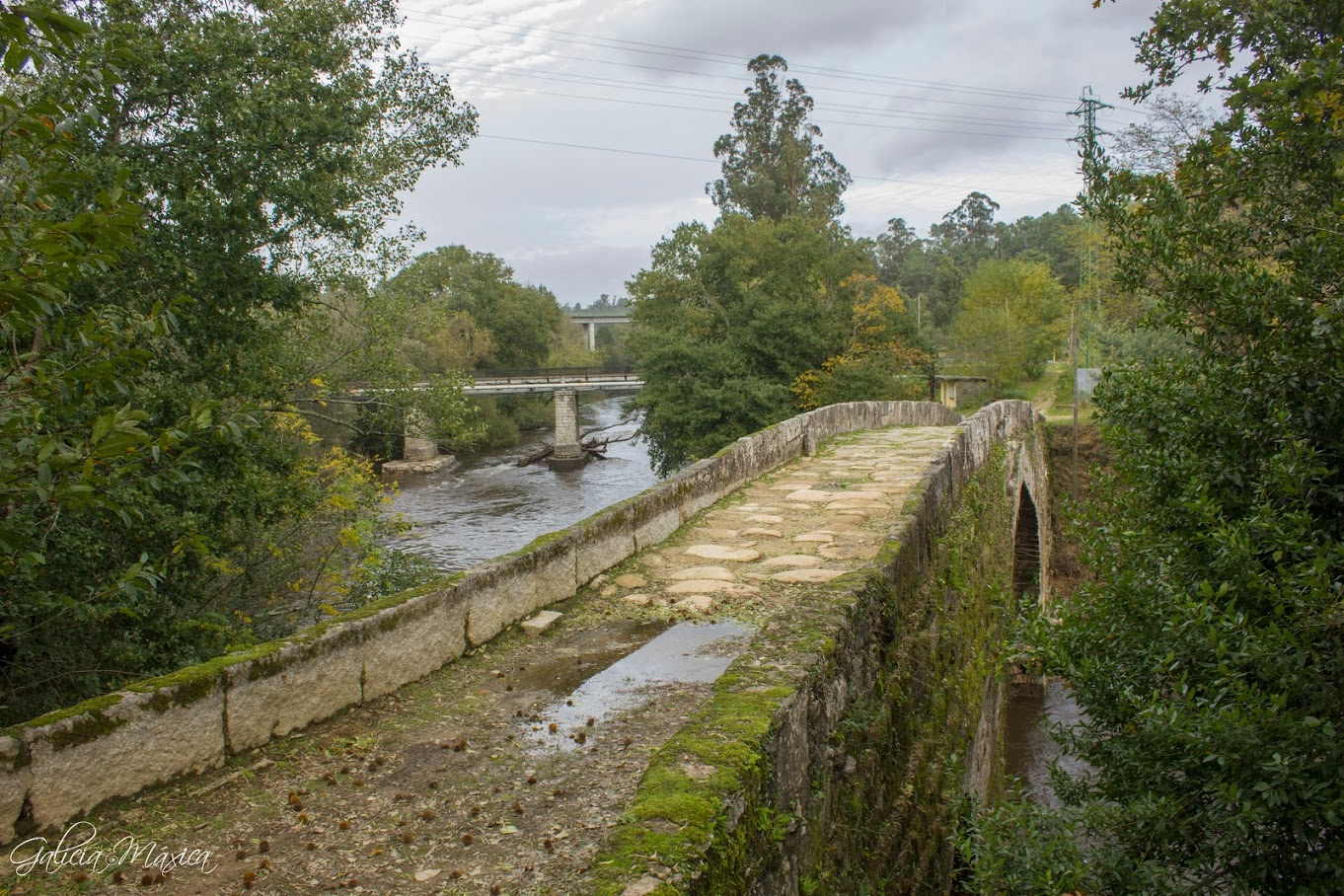 Puente de Fillaboa