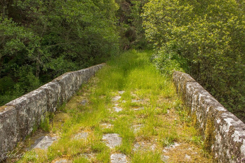Calzada del puente