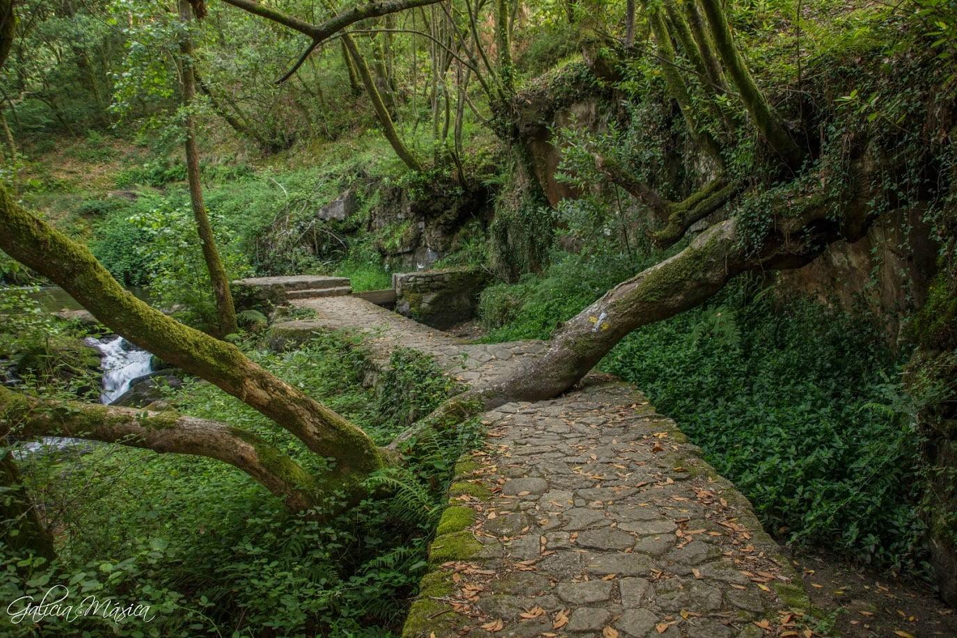 Ruta da Pedra e da auga